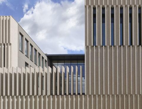<strong>Campus Universitario de la UVA Fase II, Segovia, España</strong><br/>Año 2019